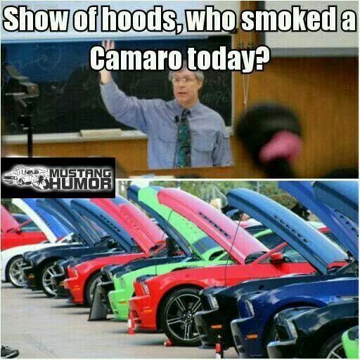 #mustang  #car memes