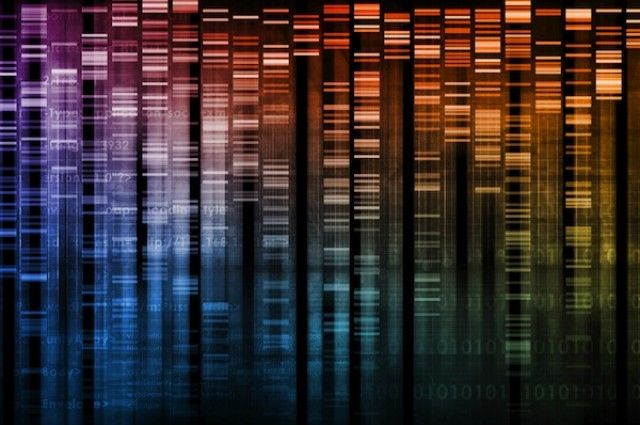 Researchers Discover Extra DNA Base | IFLScience