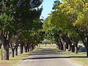 mount olive cemetery #obituaries #deathnotices #vitalrecords  #cemeteryrecords #genealogy #genealogist #freegenealogysites