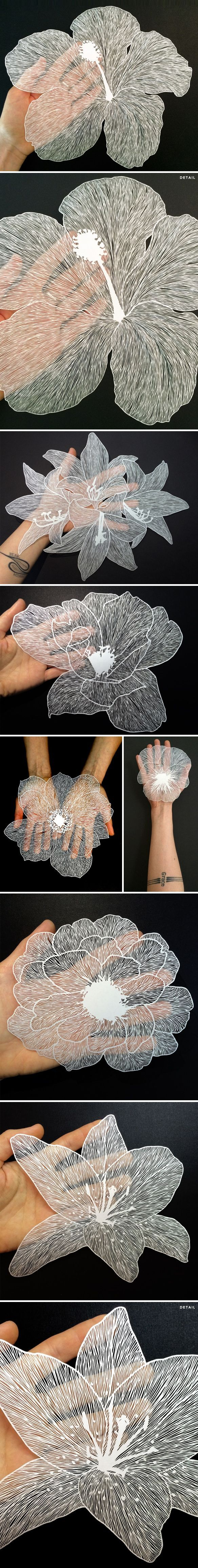 hand cut paper flowers by MAUDE WHITE PAPER ART / ㊙️CUT-PAPER ART / PAPER ART IDEAS✂️More At FOSTERGINGER At Pinterest✂️