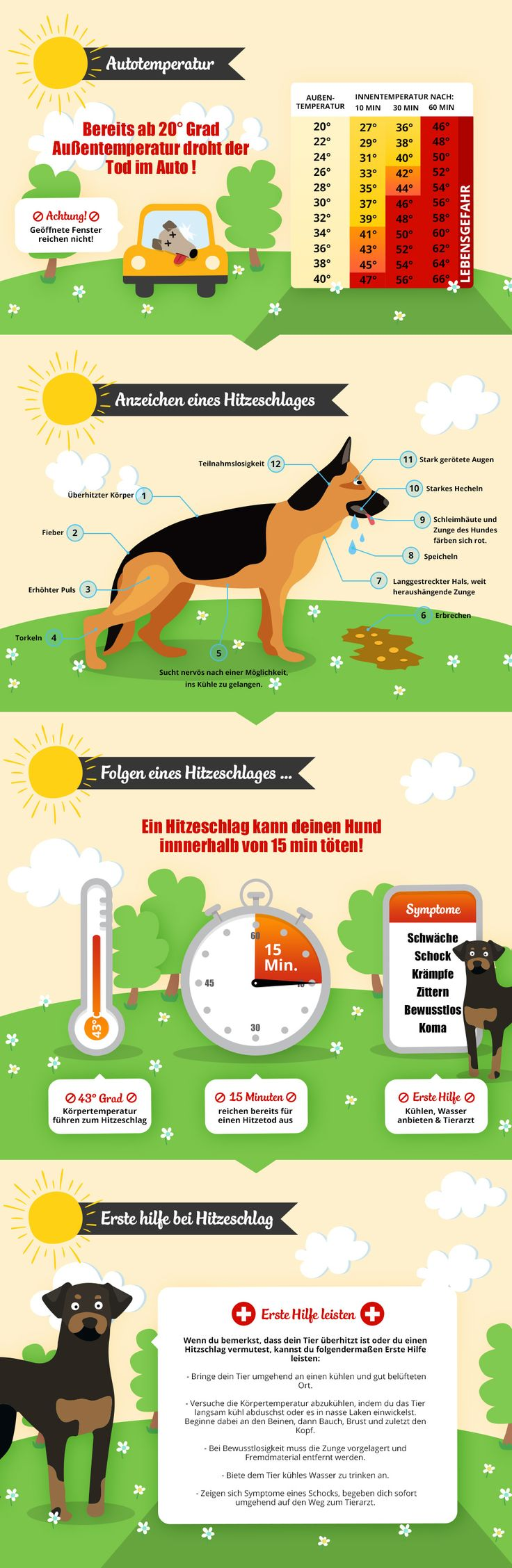 Vorsicht: Hitzefalle Auto Infografic. Car temperature pet safety infographic.