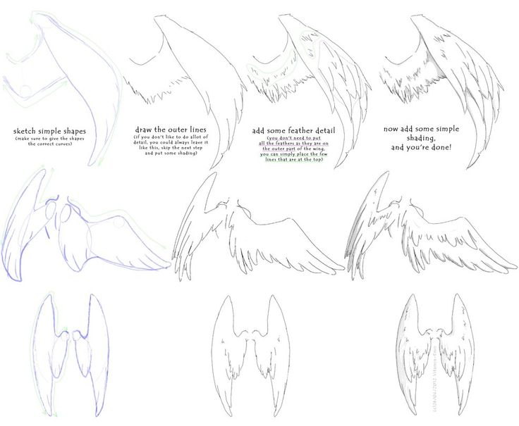 Character Design Tutorial Manga : How to draw manga angel wings tutorial art