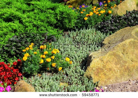 beautiful landscape designs - Google Search