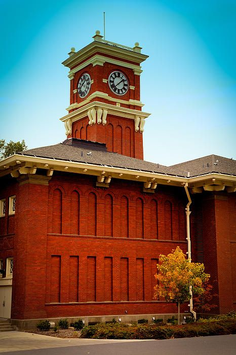 113 best images about My WSU and Pullman Photography on ...