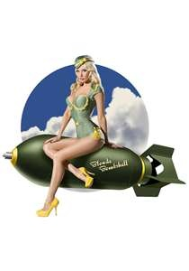 45 best air force pin up girls images on pinterest 31