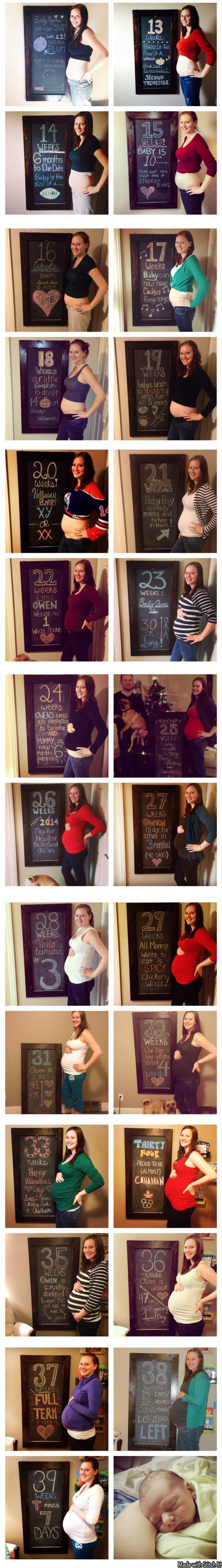 Weekly pregnancy updates.  Chalkboard updates  Week 12-40