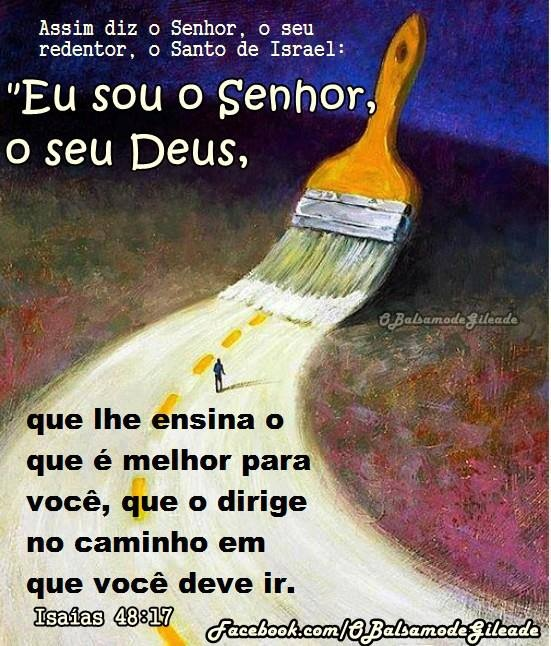 """Assim diz o Senhor, o seu redentor, o Santo de Israel: """"Eu sou o Senhor, o seu Deus, que lhe ensina o que é melhor para você, que o dirige no caminho em que você deve ir.  Isaías 48:17"""
