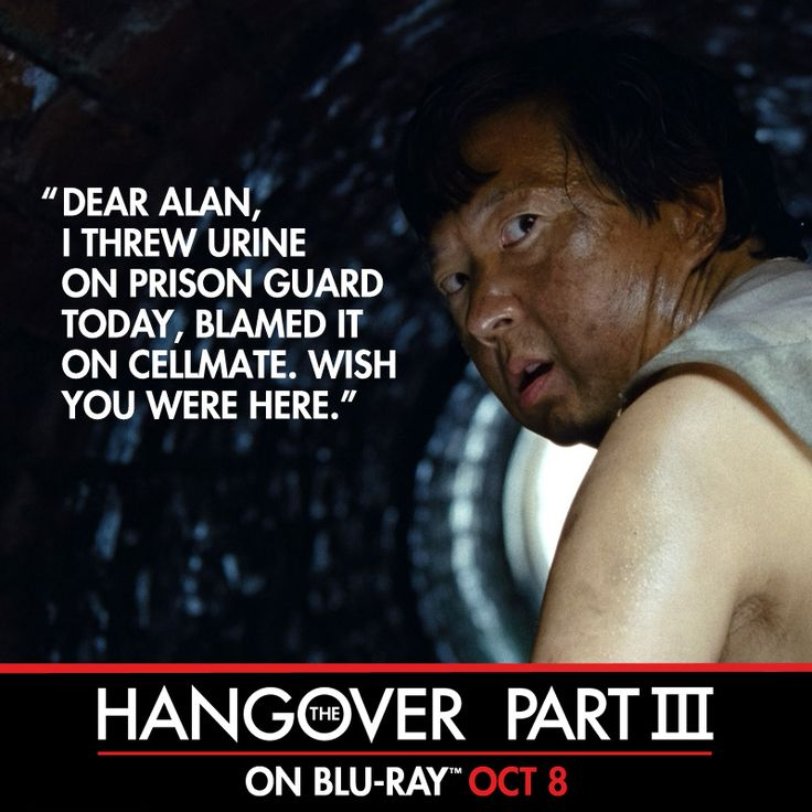 Hangover Movie Quotes Funniest Lines: 17 Best Images About The Hangover Part III On Pinterest