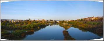 Los Sotos de la Albolafia: declarado monumento natural por la Junta de Andalucía está situado en un tramo del río Guadalquivir comprendido entre el Puente Romano y el Puente de San Rafael, con una extensión de 21,36 hectáreas  Albergan una gran variedad de avifauna y es un punto importante de migración para muchas aves.