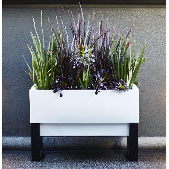 Urban garden self-watering planter