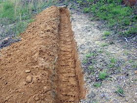 how to dig a swale (to help channel excess water on your land) and where to put it....