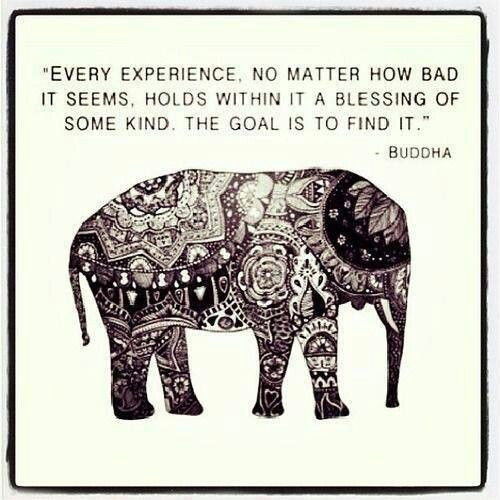 every experience, no matter how bad it seems, holds within in a blessing of some kind. the goal is to find it.