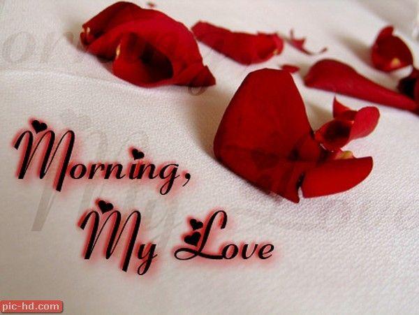صور رمزيات صباح الخير حبيبي بالانجليزي Citaten Over Liefde Liefde Goedemorgen