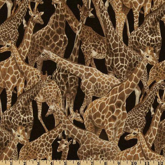 7 Best Giraffes Images On Pinterest