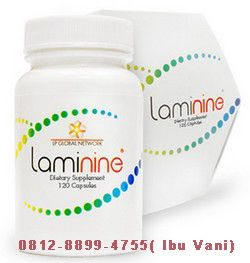 Konsultasi dan Pemesanan: Ibu Stefani CALL/SMS/WA 0812-8899-4755 Pusat Penjualan Resmi Laminine Indonesia website http://www.TokoLami9.Com/ http://agenresmilaminine.wordpress.com/... http://laminineindonesia.tumblr.com/... http://twitter.com/juallaminine http://www.linkedin.com/in/agen-res... http://plus.google.com/u/0/11680677... http://www.youtube.com/channel/UCgF... http://www.facebook.com/agenlaminin... [ Nama : Mega Pratiwi SMKN 1 Luragung]