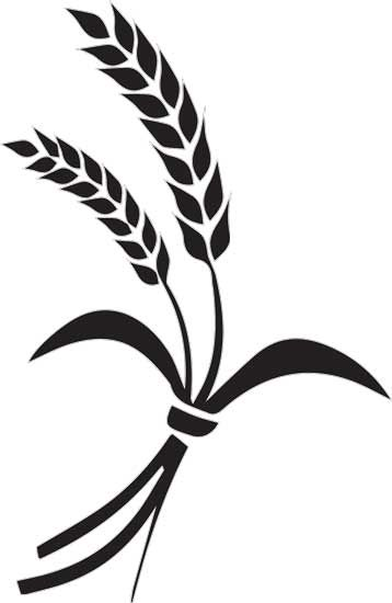rice plant clipart black and white
