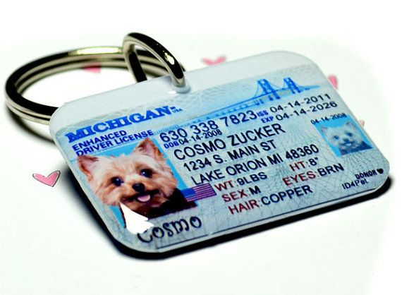 Cool dog tags! You can personalize with your state and pet's information! (Dog Tag Cat Pet Tag Pet ID Tags Driver License by ID4Pet, $25.00)