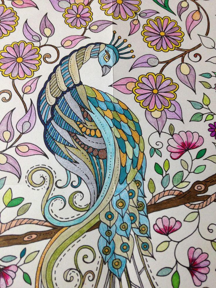 d tail du paon de jardin secret jardim secreto pinterest le paon jardins secrets et paon. Black Bedroom Furniture Sets. Home Design Ideas