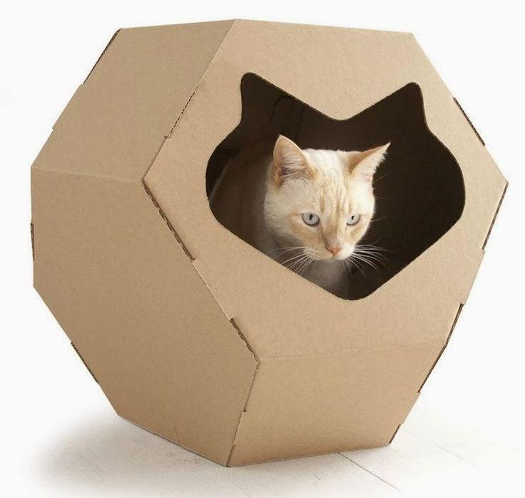 """El gato de Schrödinger tiene problemas para pensar creativamente. Al parecer hay un 50% de probabilidades de que pueda """"pensar fuera de la..."""