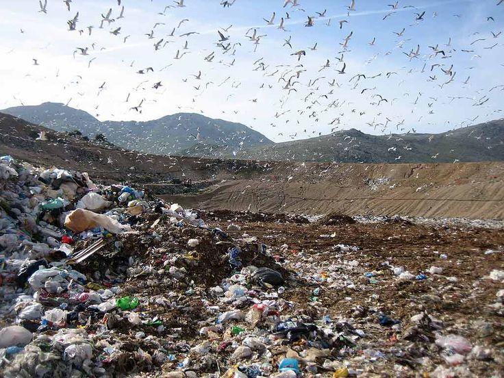 Inchiesta sui rifiuti/ Il Piano che non c'è e la bufala sugli otto…