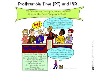 prothrombin time (PT) and INR