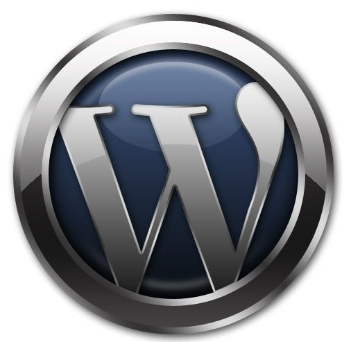 expertise for wordpress development can be divided into several different areas