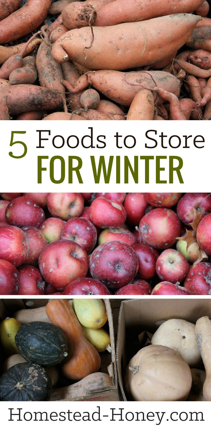 Stocking up on crops in the fall is a great way to have high quality food on hand for winter. Here are my five top foods to store for winter eating. | Homestead Honey