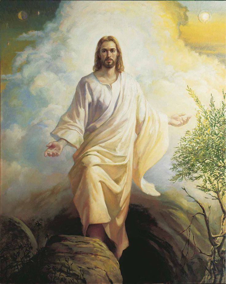 2978 best JESUS CHRIST images on Pinterest | Savior, Jesus ... Pictures Of Jesus