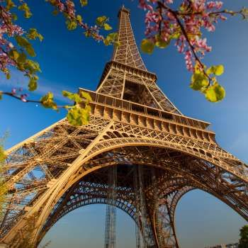 Compare airfares for 6 months of departure dates to many Europe destinations in 1 second.