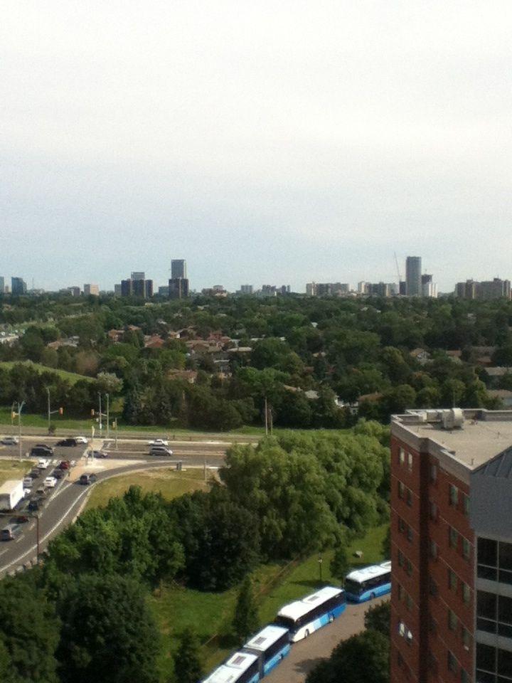 Summer in Toronto Ontario