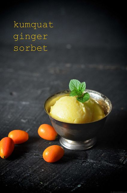 Kumquat Ginger Sorbet by abrowntable, via Flickr