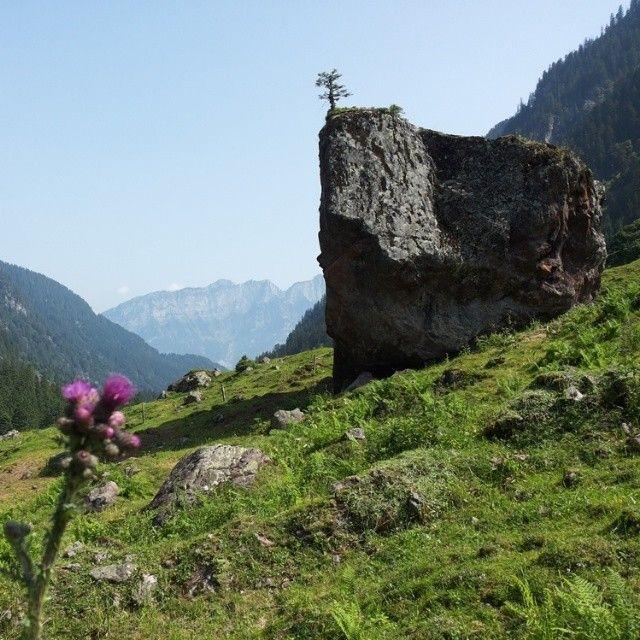 Rock in the #Murgtal valley in the #Heidiland Holiday Region. More on www.instagram.com/swissheidiland