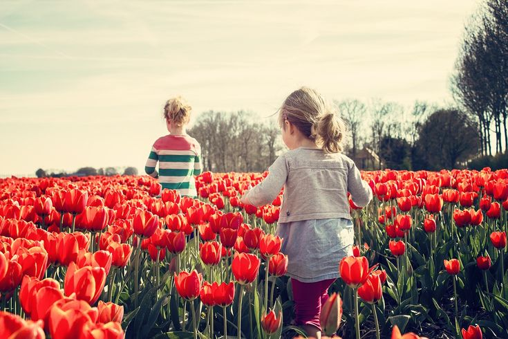 Girls in tulip field