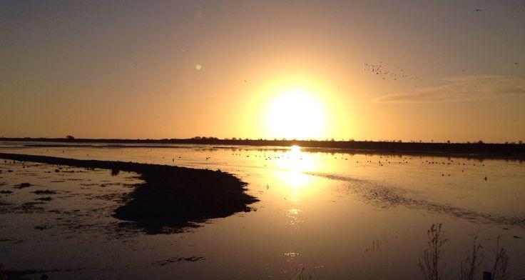 Dusk at RSPB Marshside