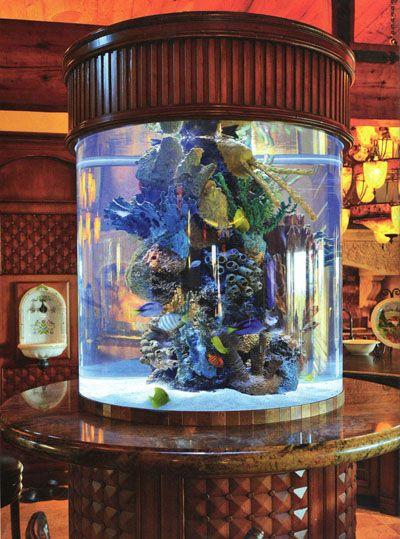 vintage wood saltwater aquarium