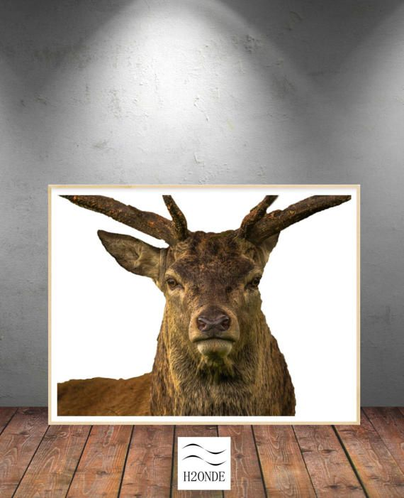 Deer digital print download wall art printable instant by H2ONDE