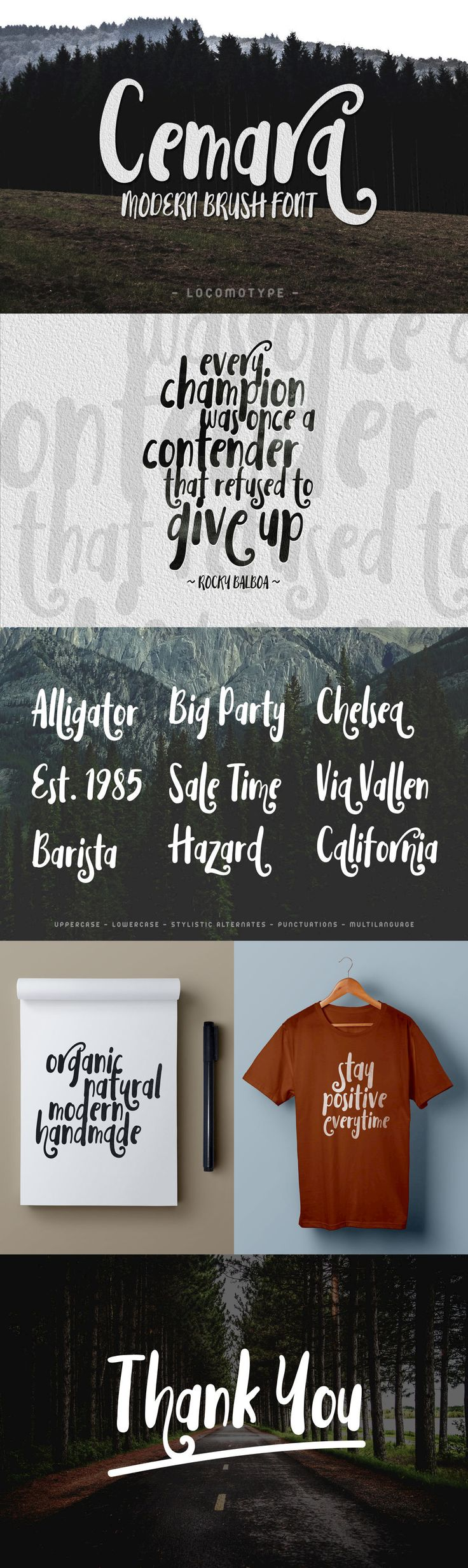 Cemara - Cemara is a hand-painted typeface inspired by modern calligraphy.  This is a kind of an organic fo...
