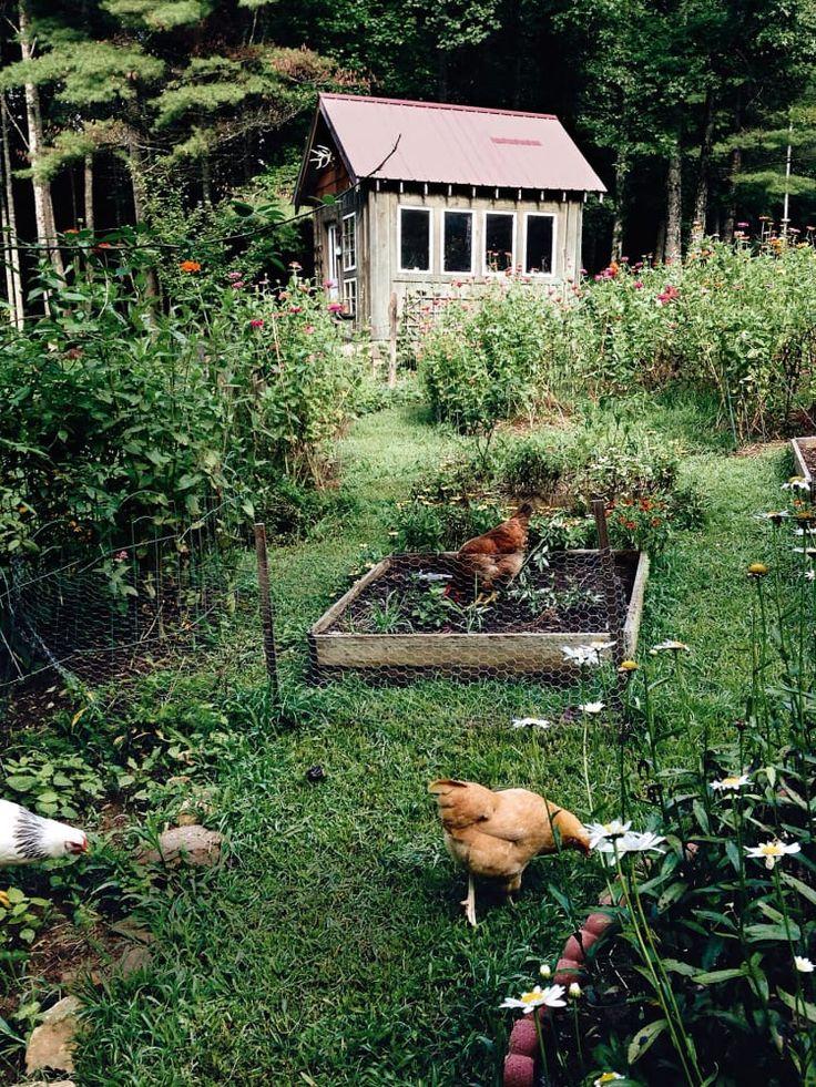 Schrebergärten einrichten – so wird die Gartenlaube zum Cottage