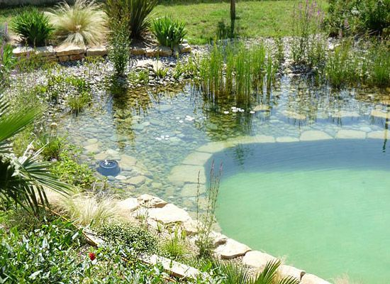 next to a natural looking swimming pool filtered by the plants instead of chlorine