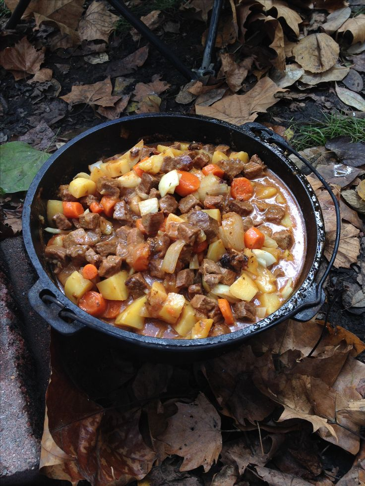 556 best camp dutch oven recipes images on pinterest for Dutch oven chicken recipes for camping