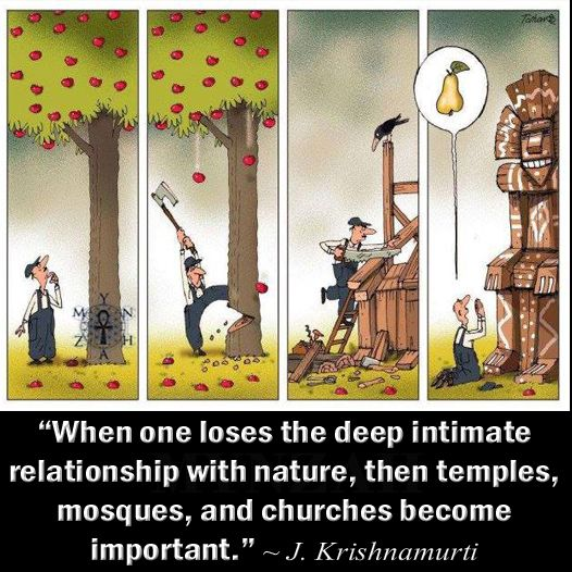 """When one loses the deep intimate relationship with nature, then temples, mosques, and churches become important."" ~ J. Krishnamurti"