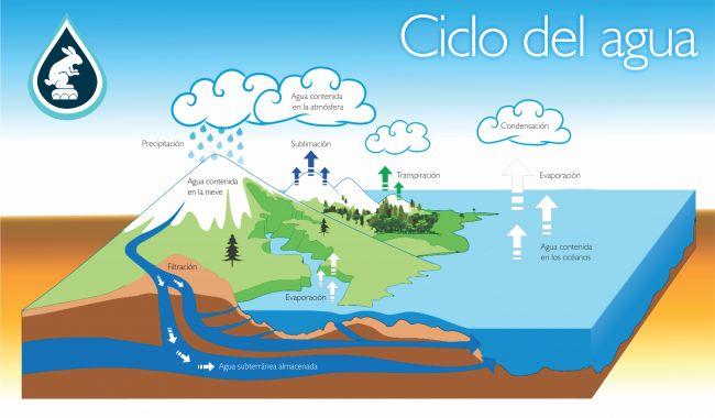 Cómo enseñar el ciclo del agua a los peques de manera divertida - Los Que NoLos Que No