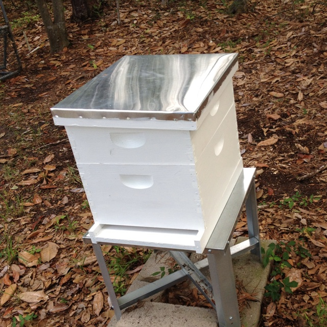 bee hive!: Bees Hives, Life Dream, Hives Honeyb,  Bees House, Apiari, Bee Hives, Dream Gardens, Honey Bees, Hives Honey Being