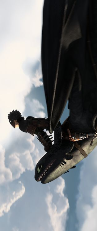 I wonder if Hiccup is smiling underneath his helmet, 'cuz Toothless certainly is.