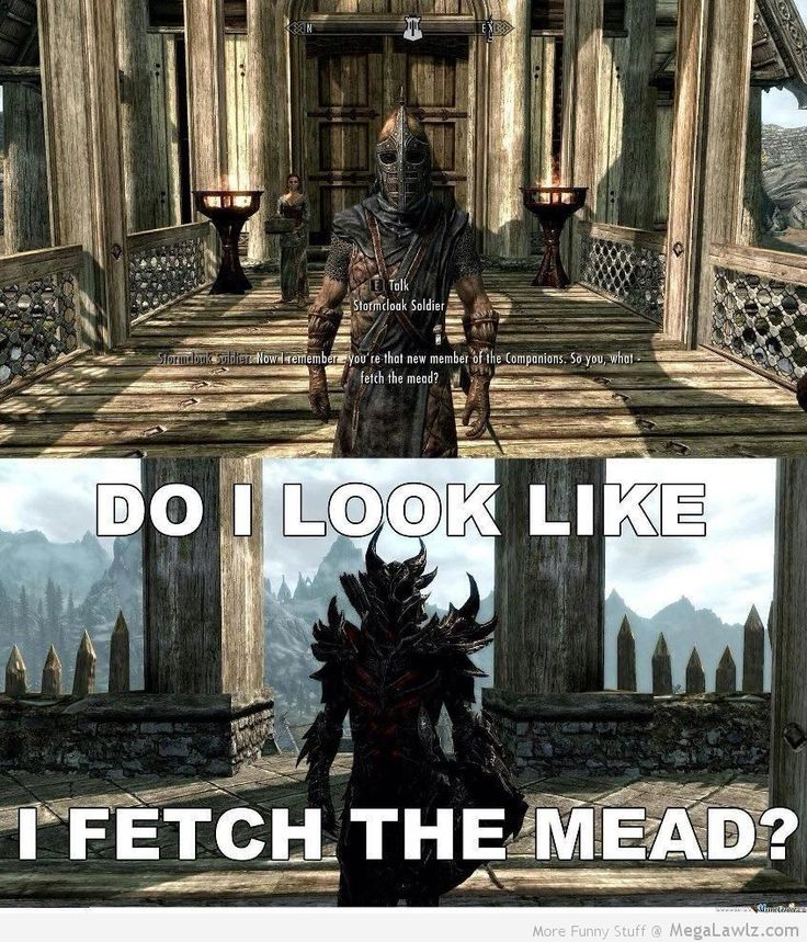 Thing is...by the time the Whiterun Guard said that to me, I was the Harbinger, Thane of WHITERUN, head honcho of the Thieves Guild, and a FREAKING NIGHTINGALE! AND YOU THINK I FETCH THE MEAD?!