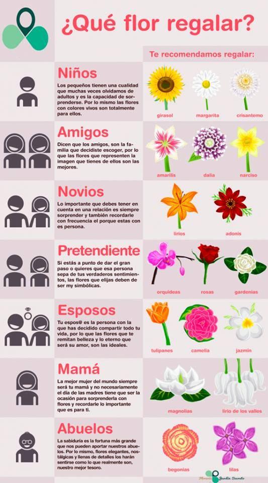 TIPO DE FLORES PARA REGALAR #Arreglosflorales