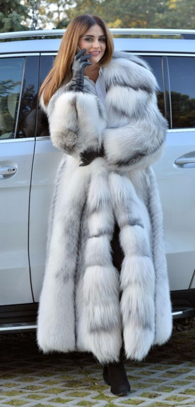 2017 ARCTIC ROYAL FOX LONG FUR COAT HOOD CLASS CHINCHILLA SABLE MINK LYNX SILVER