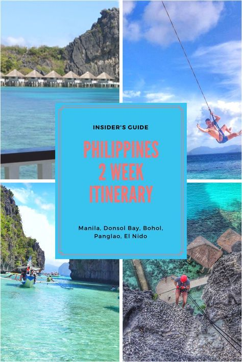 Swim with whale sharks in their natural migration patterns, relax in your cottage on the water, dive into the clearest blue waters with sea turtles, be pampered in nature with a glamping experience, visit Donsol Bay, Manila, Bohol, Panglao, and El Nido with this wonderful 2 week itinerary of the Philippines!