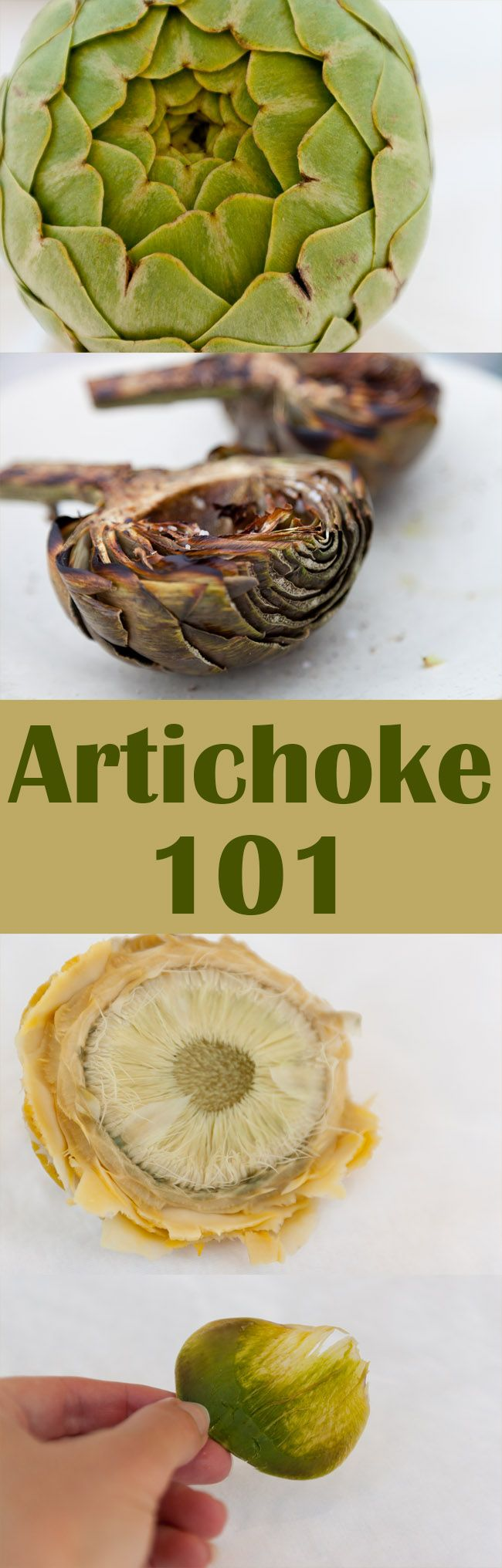 Artichoke 101. Are you a little unsure about this delicious veggie. Here's a full how to on preparing, cooking, and eating them. From microwaving, steaming, grilling, to baking and everything in between. Here's your full tutorial!