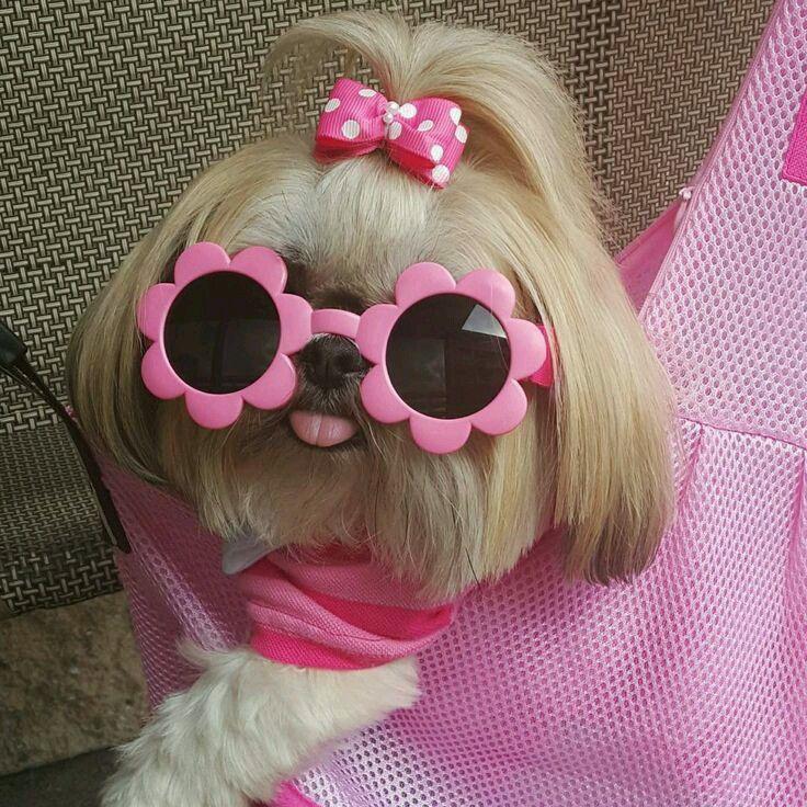 I don't like pink, but I love cute ❤️